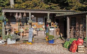 Blue Tin Produce farm shop