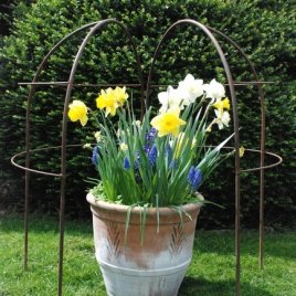 Half Lobster Pot frame
