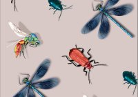 IN0F-15 IRIDESCENT INSECTS