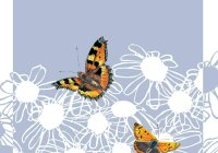 CT00-14 SMALL COPPER AND SMALL TORTOISESHELL