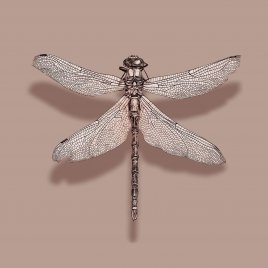 DR00-14 DRAGONFLY