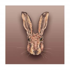 HA00-14 BROWN HARE