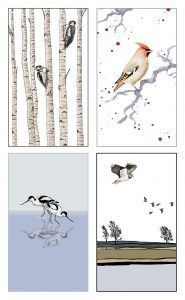 'BIRD' Notecard 8-pack