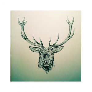 PRD00-16 RED DEER (Print)